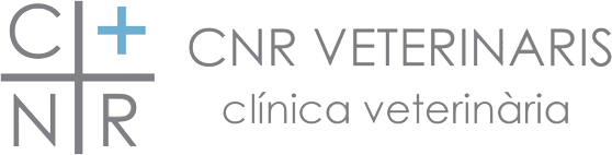 CNR Veterinaris